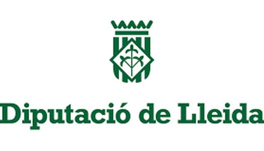 Subvenció rebuda de la Diputació de Lleida per la convocatòria del pla d'arrendaments i subministraments